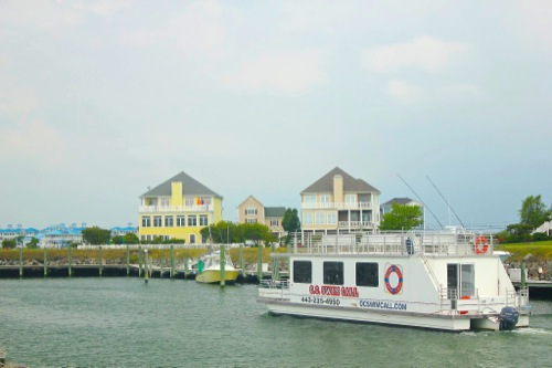 Boat Tour in Ocean City MD