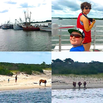 Nature Boat Tour Ocean City Maryland