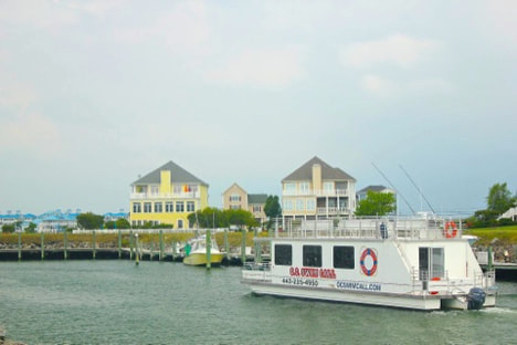 Boat Tour in Ocean City, MD